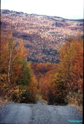 autumn-highway-finnmark