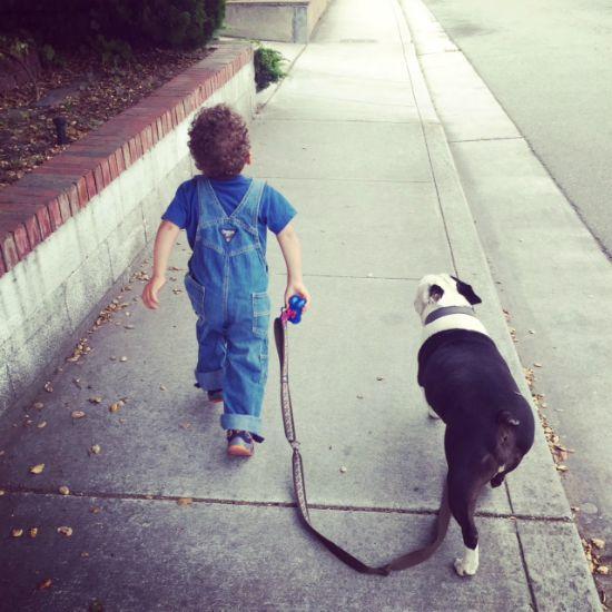 adoption story