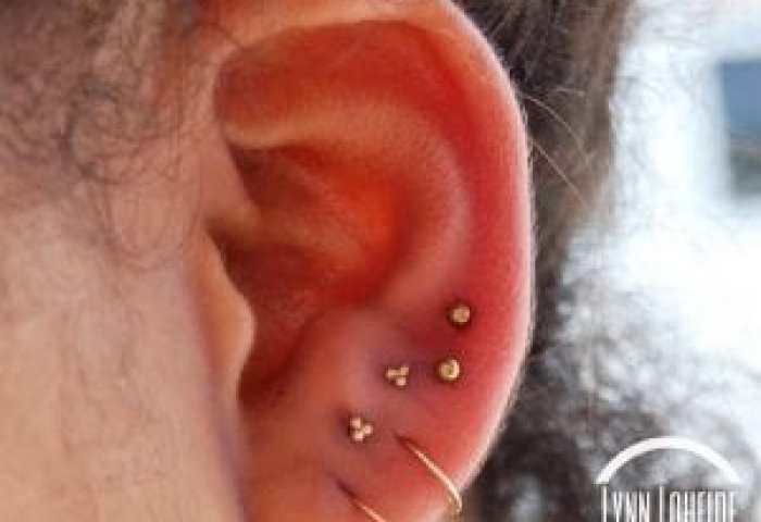 Curated Ear Piercings Amato Fine Jewelry Body Piercing