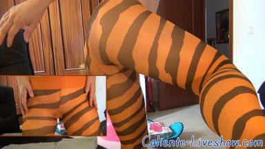 collant tigre en orange et noir