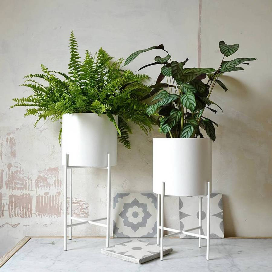 If you're someone who loves plants in the home, but just don't have enough plant stands to hold them all, then it is time to think about ingenious ways in which you can solve this conundrum.