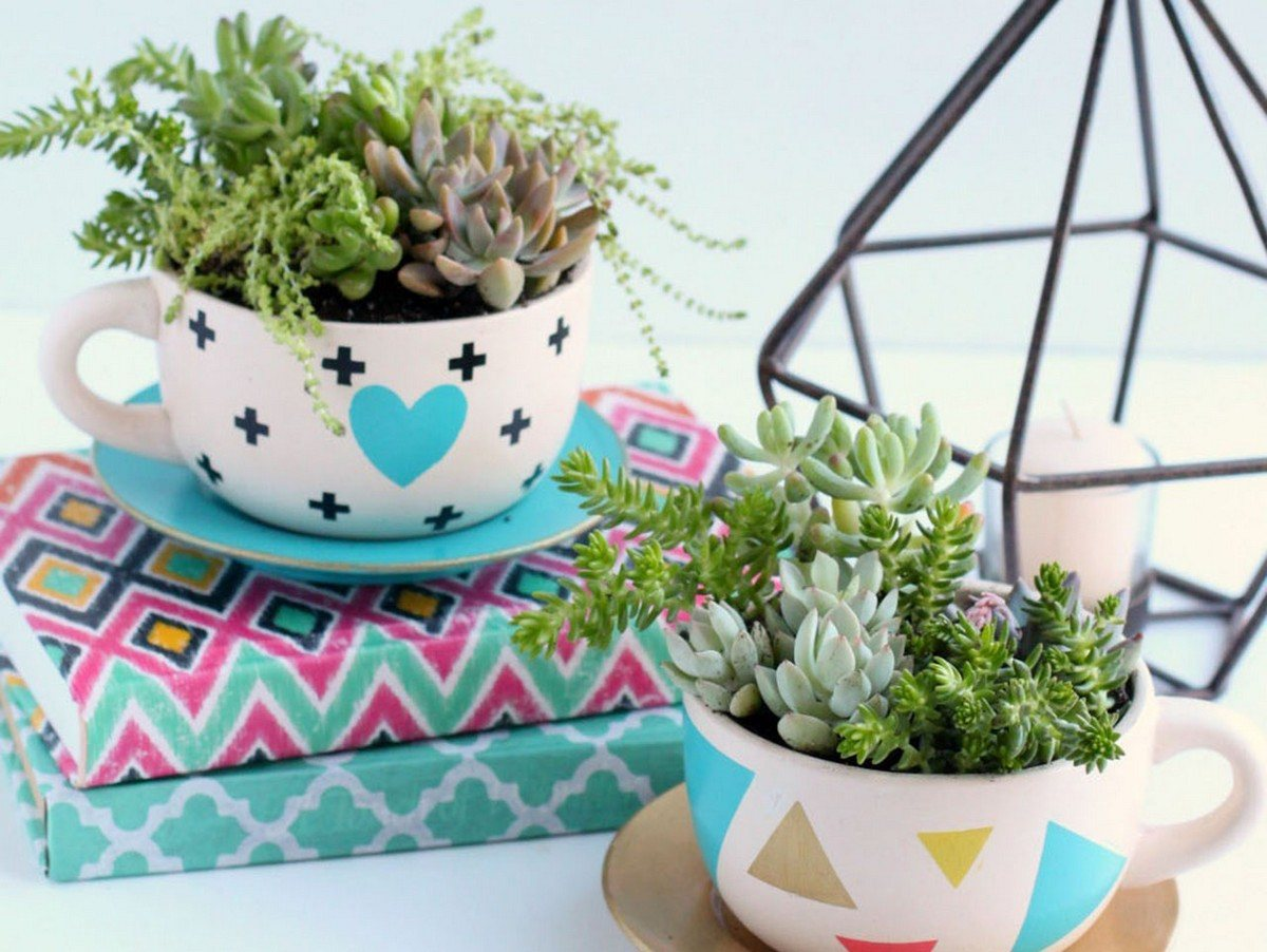 Ready for the best new trend in miniature gardens? Try a garden in a teacup!