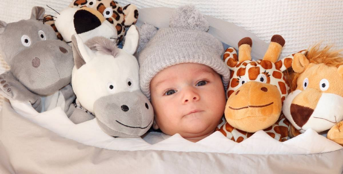 The majority of first time parents worry about letting their baby sleep with stuffed animals in their cribs for the earliest time! Letting a baby keep their infant stuffed animal by their side while they sleep could be a risky move.
