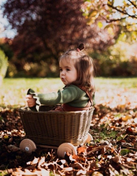 A healthy alternative to other toys, the Natural Wicker Pull Cart is an artistic handicraft with perfectly selected details. The wicker stroller will not only be a great toy, but also an extraordinary decoration for a child's room.
