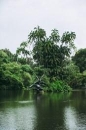 07-singapore -botanic-gardens-lake