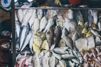 19-tekka-market-fish-table