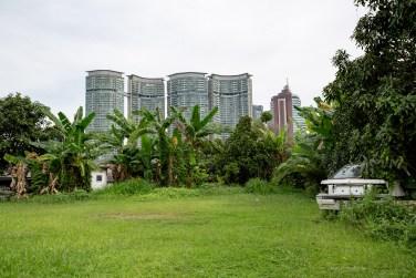 Kampong Baru Malaysia KL green