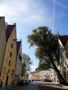 Life in Tallinn - sunny day in the Old Town