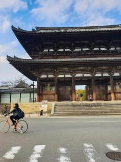 Narabigaoka hill Kyoto hike ninna ji temple