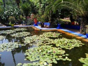 Jardines de Marrakech