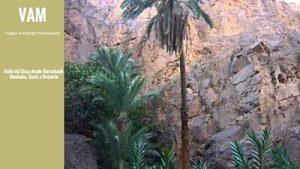 valle-del-draa-viajes-amazigh-marruecos-blog-alojamientos-4