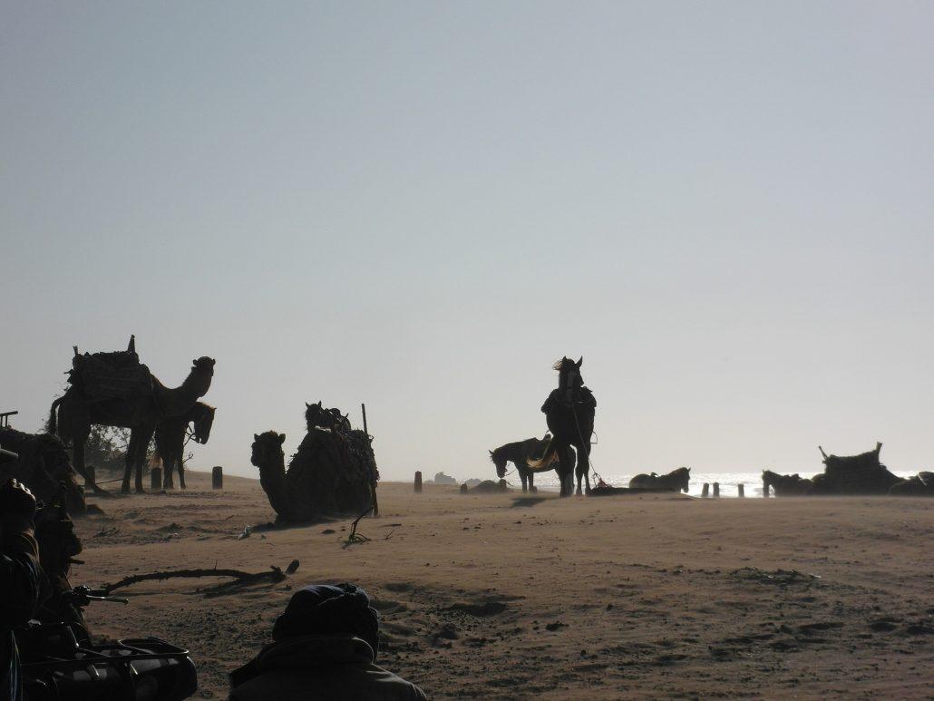guia-de-essaouira-viajes-amazigh-marruecos-17