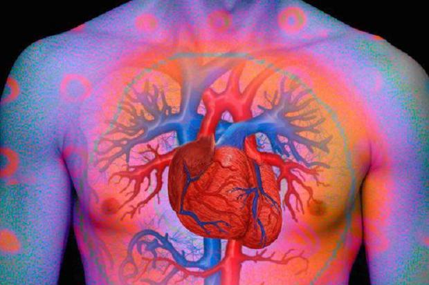 4 Tips Efektif Menjaga Jantung Tetap Sehat