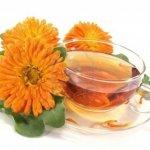 Resep dan 7 Manfaat Kesehatan Teh Calendula