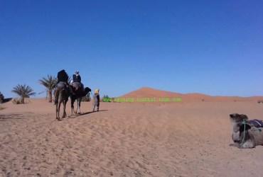 8-day mgoun Sahara combined trip