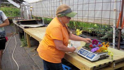 Weighing PYO flowers