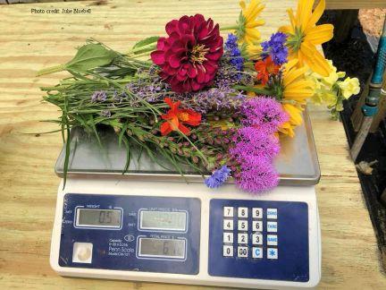 scale-bouquet-julie-bluebell6