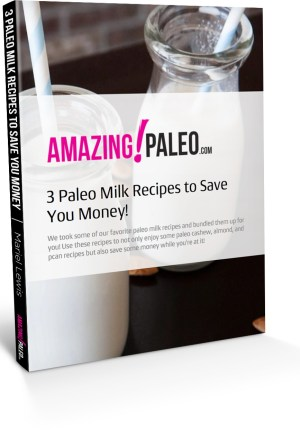 BOOK-MOCKUP-3-paleo-milk-recipes-to-save-you-money