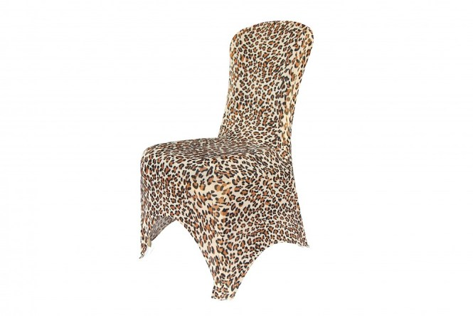 Zebra Dining Chair Covers Leopard Print The Best Of 2017