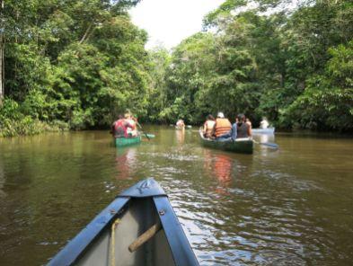 Canoe tour into the Cuyabeno Amazon Reserve in Ecuador