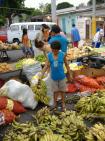City-Touren, Manaus, Bild 3