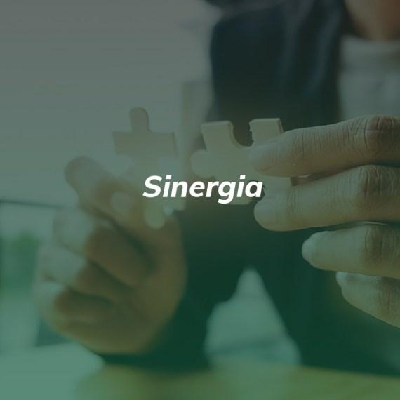 Sirnergia