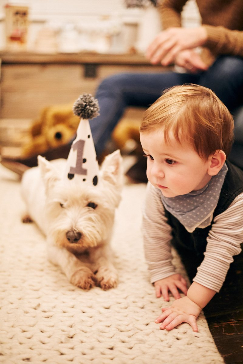 George's 1st Birthday - Amber-Rose Photography 141