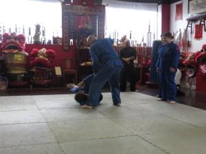 Joe martial arts demo
