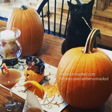 Gus and pumpkins halloween