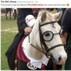 Harry Potter horse cosplay