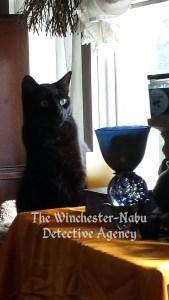 Gus and crystal ball