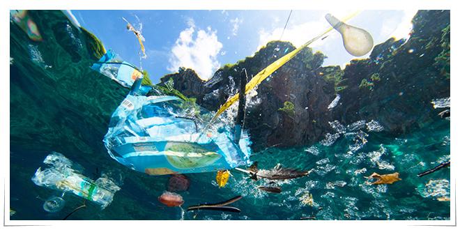 Photo of Acciones para el manejo responsable de residuos plásticos