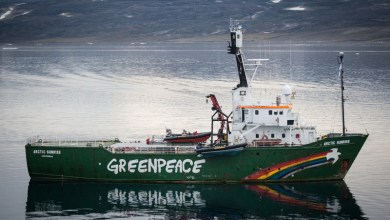 Photo of PLASTICS responde a último informe de Greenpeace
