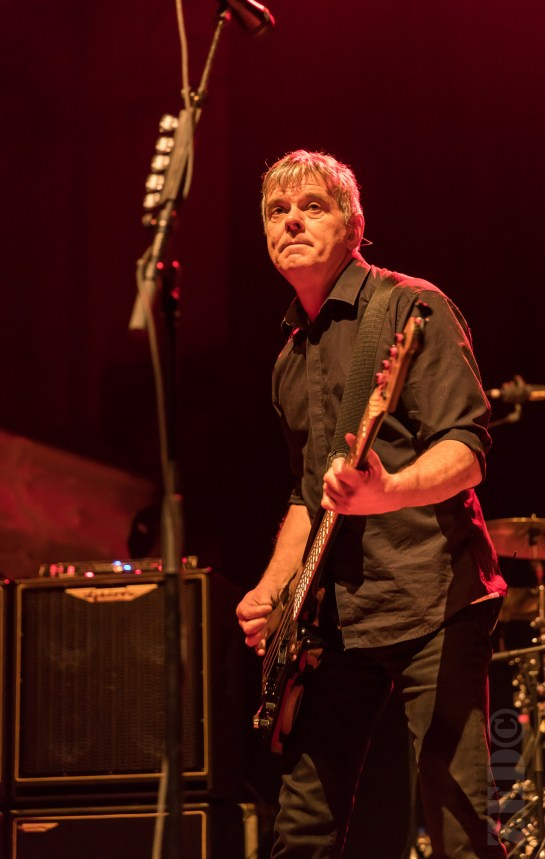 The Stranglers performing live in Auckland, New Zealand 2018. Image by Zed Pics.