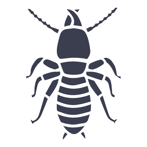termitas y carcomas