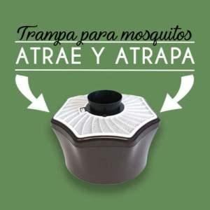 eliminar mosquito tigre malaga prevenir picadura mosquito tigre