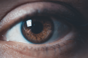 Following the Light - Part VI: The Retina, continued