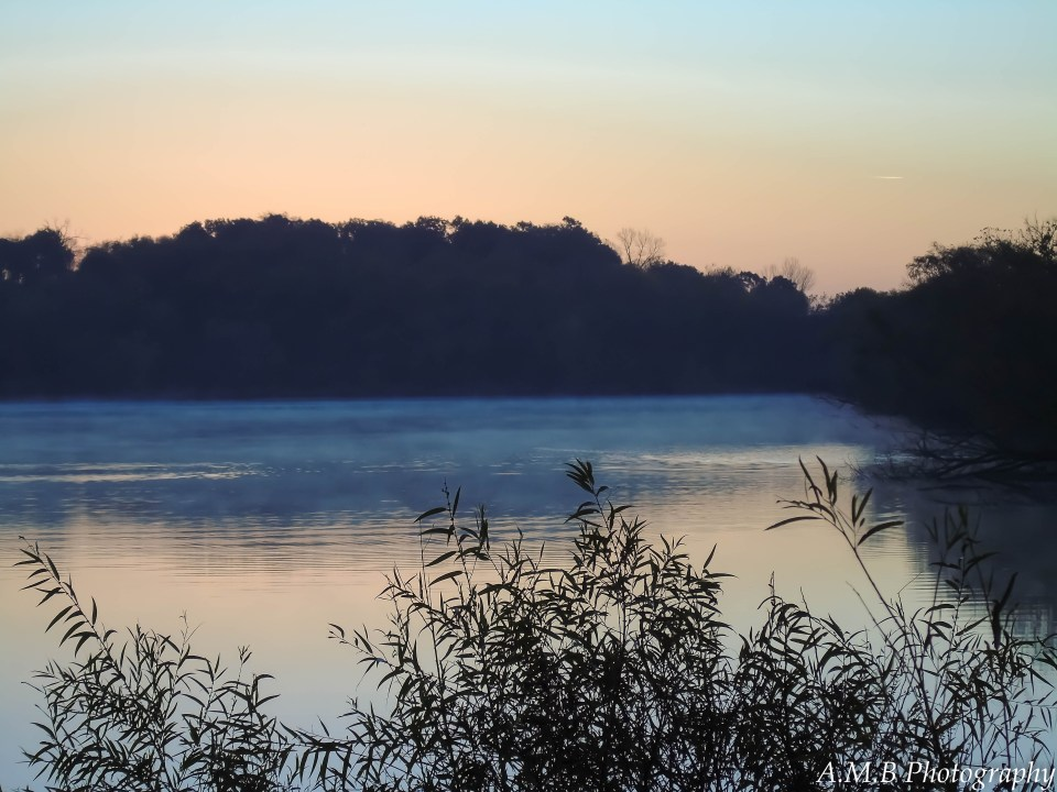 A large pond on a windless day, capture in the pre sunrise light.