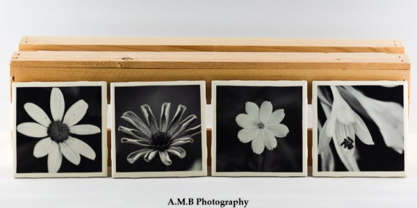 Set of 4 Black and White Bloom Coasters featuring a series of images highlighting Summer blooms at our home in Dana, Illinois from 2018. Coasters designed and made in the Fall of 2018.