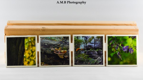 Set of 4 LaSalle County Coasters featuring a series of images highlighting Fall colors in the area. One image is the side of the tree in my front yard, and the three others were captured in Starved Rock State Park. Coasters designed and made in the Fall of 2018.
