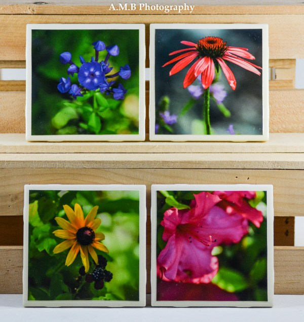 Set of 4 High GlossSummer Blooms Coasters all captured in my home gardens.