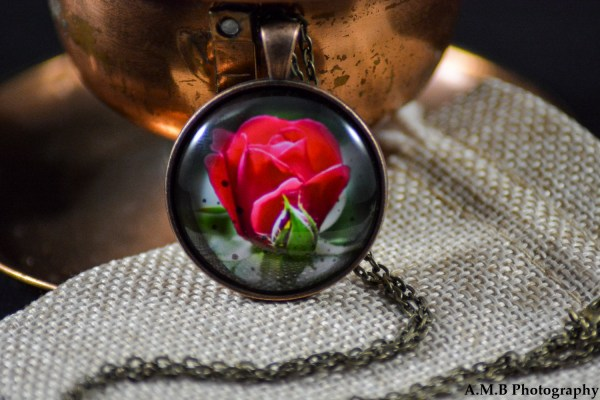 A red Rose set in an Antique Copper bezel with a brass chain. Image captured in the Spring of 2017 and pendant created in the Winter of 2019.