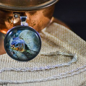 A three-toed box turtle set in a Shiny Silver bezel with a shiny silver chain. Image captured in the Fall of 2016 and pendant created in the Winter of 2019.