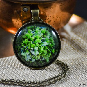 A green Winter tuft moss set in an Antique Bronze bezel with a brass chain. Image captured in the Winter of 2019 and pendant created in the Winter of 2019.