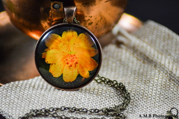 A yellow Cosmos set in an Antique Copper bezel with a brass chain. Image captured in the Summer of 2018 and pendant created in the Winter of 2019.