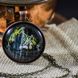 The branches and trunk of a Bald Cypress tree set in an Antique Bronze bezel with a brass chain. Image captured in the Fall of 2018 and pendant created in the Winte of 2019.