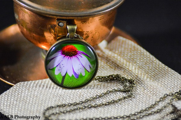 A purple Coneflower set in an Antique Bronze bezel with a brass chain. Image captured in the Summer of 2018 and pendant created in the Winter of 2019.