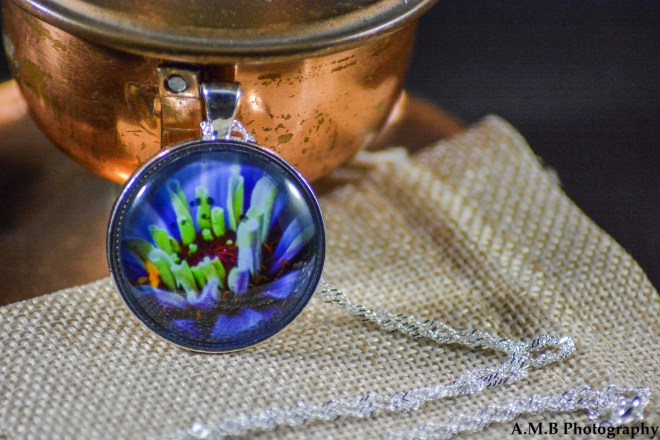A purple Zinnia flower bloom set in an Shiny Silver bezel with a shiny silver chain. Image captured in the Summer of 2018 and pendant created in the Winter of 2019. Check this one our while you Shop for Unique Gifts.