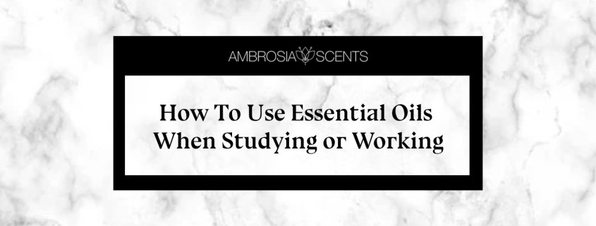 How To Use Essential Oils When Studying or Working