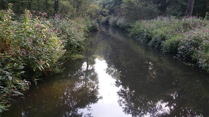 Wandelen over het Peerkepad bij riviertje de Reusel
